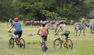 bicycle tours at lake Mburo National park